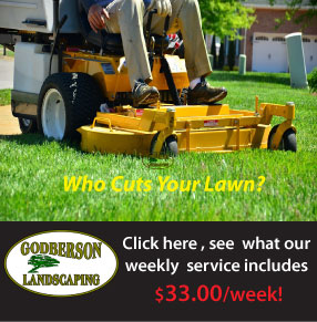$33.00 weekly lawn cutting service